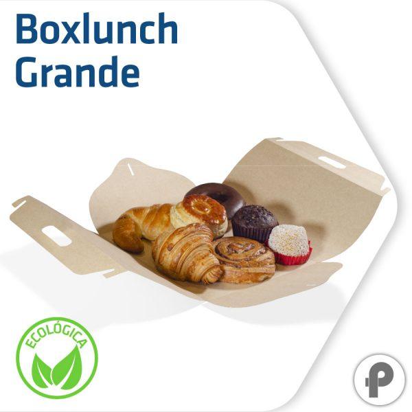 Boxlunch para pan